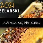 Bezpłatny kurs zawodowy dla pszczelarzy 2021